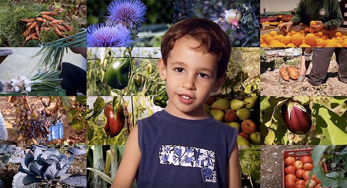 Fotograma del vídeo Comedores Escolares Sostenibles. Proyecto BioCor de la Asociación Subbética Ecológica